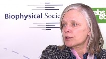Interview with Biophysical Society President, Dorothy Beckett, PhD