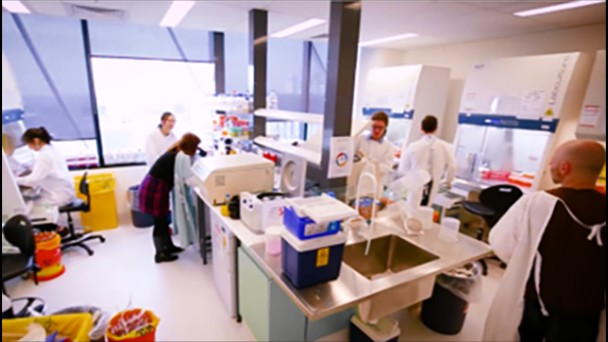 Peter MacCallum Cancer Centre Medical Oncology Department